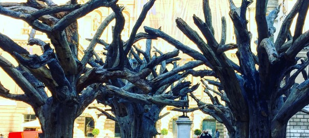 Trees from the Ai Weiwei at the Royal Academy