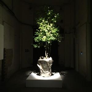 Hybrideae by Fredrikson Stallard