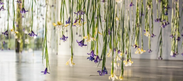 The-Iris-Rebecca-Louise-Law-at-NOW-Gallery-Greenwich-Peninsula